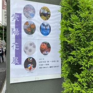 2年越し紫陽花展Vo.21