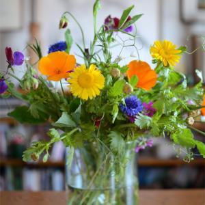 本を読もう。お花を飾ろう。