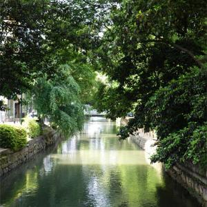 梅雨の晴れ間の西川緑道公園