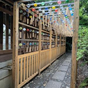 氷川神社に行ってきました🎐