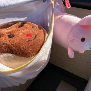 お野菜チャレンジ〜!
