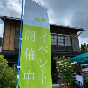 6月のSASAMEKI市会場動画、アップ完了しました