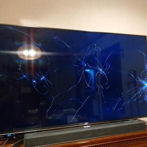 わーちゃん、TVを破壊