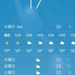 現在のソウルは気温差が激しく、まだ〇〇もいるらしい。