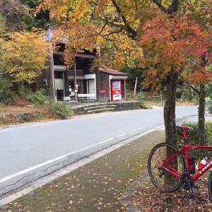 ヤビツ峠 雨上がりの秋空