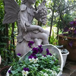 妖精像のまわりの鉢植え