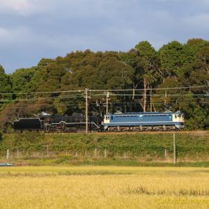 朝陽を浴びる国鉄機