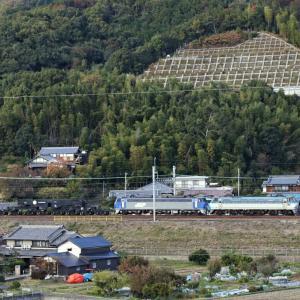 シキ800+EF200 京都鉄博へ