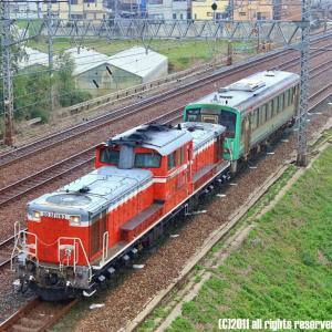国鉄型万能機 DD51