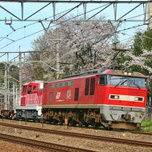 EF510 桜コラボ