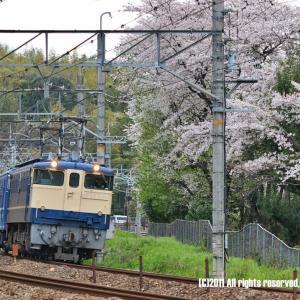 EF65+12系 山崎にて