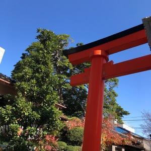 Go To・・・近所の神社で紅葉狩り♪