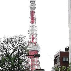 間近で東京タワー