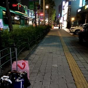 ユッケ寿司だけじゃない!なにを食べてもおいしいコヨナム♪【2017.7★ソウル郊外の旅】