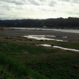 多摩川河川敷 台風被害状況