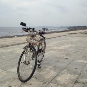 江ノ島往復100Km
