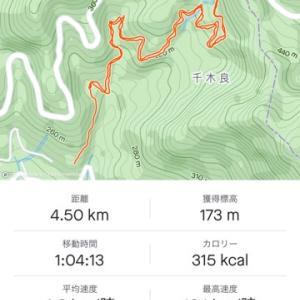 千木良→大垂水峠 廃林道