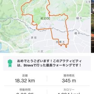 散歩 約4時18Km