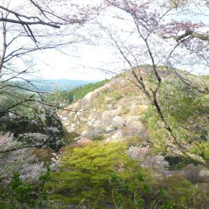 地元・奈良プチ旅   吉野山