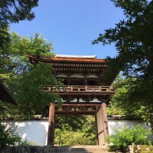 ちょっとお久しぶりの風景印 奈良県天理市