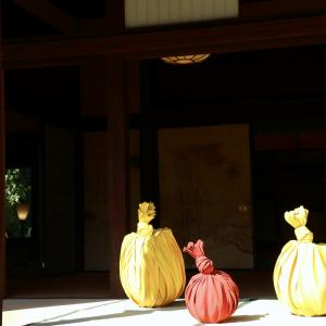 Biwako Biennale in 玄宮園 2020.10.25 Event 74-1