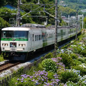 紫陽花と鉄道・・・(過去の写真)