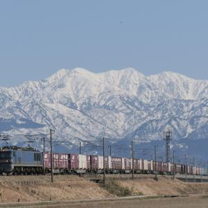 立山連峰をバックに貨物線を撮る