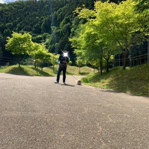 室生もみじ公園①