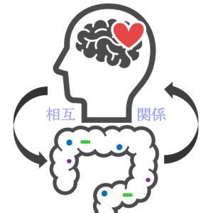 脳腸相関 脳(心)と腸は自律神経系や液性因子を介して密接に関連している!ストレスも幸福感も腸に