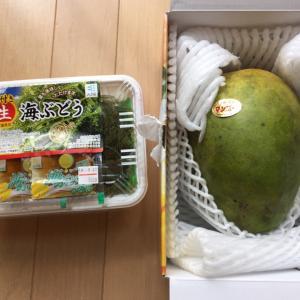 めちゃ旨だった沖縄のキーツマンゴー&島バナナ
