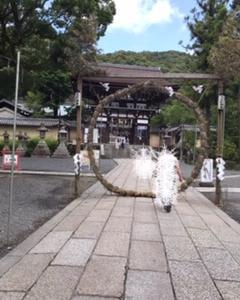 松尾大社 茅の輪くぐり