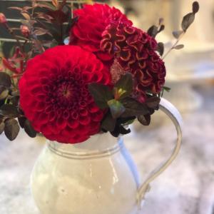 可愛いお花頂きました。