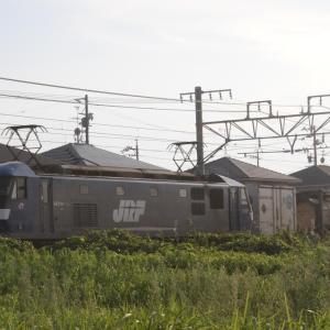 9/1 貨物列車撮影