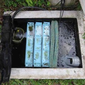 濾過槽掃除、今年の終了をいつにするか?