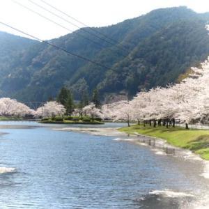 春の奈良路を走りたい・・・