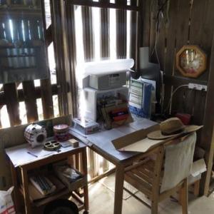 日曜日は雨。木小屋の整理整頓するかなぁ・・・