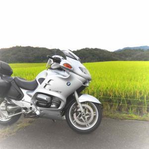 9月ラストスパート! 〜稲刈り前の田んぼにて〜