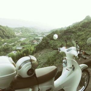 雨が降り出す前に、白かぶでゴー!
