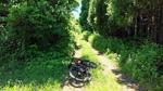 「なまはげ古道 真山神社への道」を行くby RIDGE-RUNNER (2)