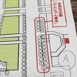 11/9(土)京都わんにゃん楽市 出店します