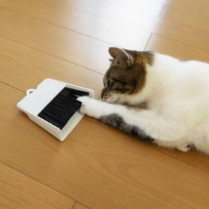 猫のトイレまわりに、100円のミニほうきセット。