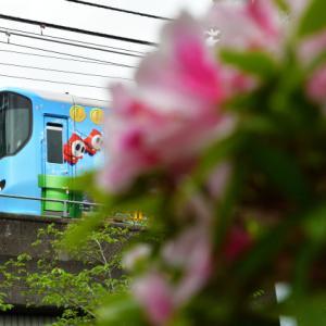 大阪環状線のラッピング電車