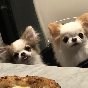 ピザ美味しいっ!