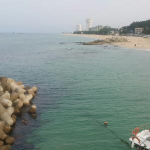 遅い夏〜海を見に 江原道 강릉