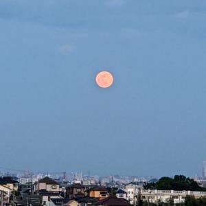 神秘的でパワフルな満月