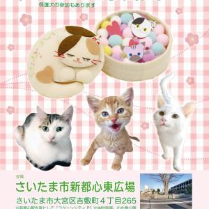 2/23(日)13時~さいたま市 新都心東広場「保護ねこ・保護犬譲渡会」開催