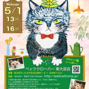 5/1(土)13時~ペッツクローバー東大宮店「保護ネコ譲渡会」開催!