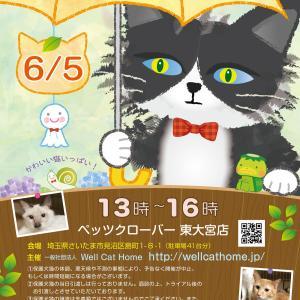 6/5(土)13時~ペッツクローバー東大宮店「保護ネコ譲渡会」開催!