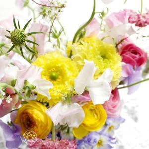 春の花のラナンキュラスは形も色も多種類で可愛い過ぎます