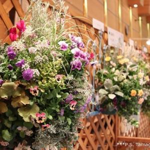 第37回 さいたま花の祭典 @八木橋百貨店